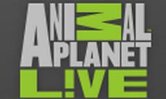 Animal Planet (ingles)