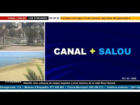 CANAL + SALOU EN VIVO