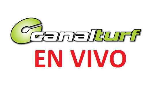 Canal Turf EN VIVO