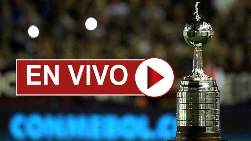 Delfín vs Olimpia EN VIVO - Ver la Copa Libertadores