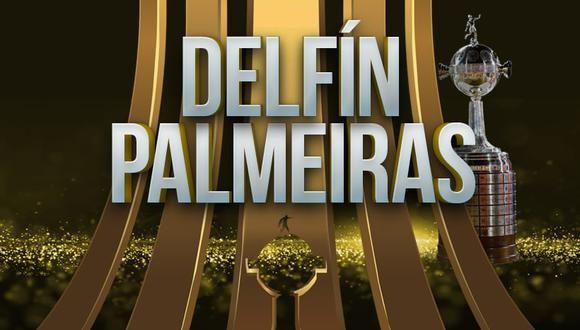 Delfín vs Palmeiras EN VIVO - Ver la Copa Libertadores