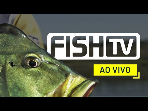 Fish TV Oficial EN VIVO
