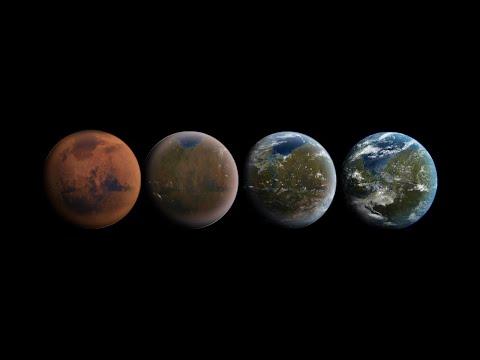 Starlink Mission EN VIVO - Space X